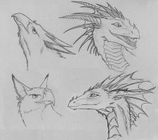 Griffins and dragons by Chickenzaur