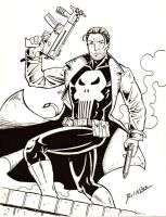 Punisher Commission by Taman88