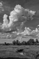 Clouds Over A Pasture by lividity101