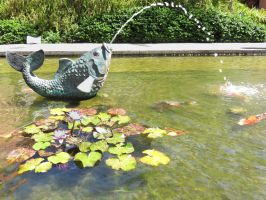 Koi Pond Fountain by ShipperTrish