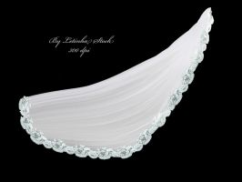 Lace Veil by letinhastock