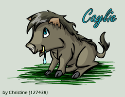 Caylie the Boar by TinTans