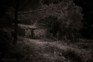 Abandoned stone cottage. by CabrerFoto