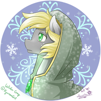 Winter Gray bust [prize] by Auriaslayer