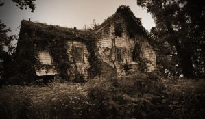 What we call Shelter by PAlisauskas
