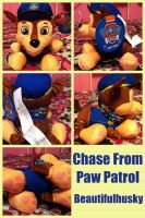 Chase From Paw Patrol by BeautifulHusky