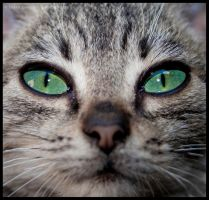 look into my eyes 2.0 by Bgranny