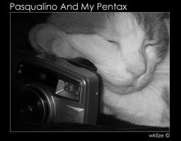 Pasqualino And My Pentax by WKLIZE