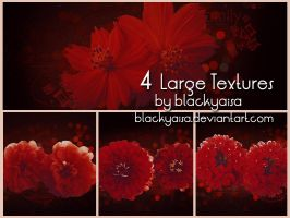 texture set: 87 by blackyaisa