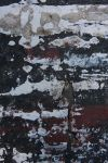 Old Paint Texture III by ArtistStock