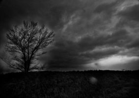 storm by invisibletape