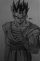 Ultimate Gohan by Conzibar
