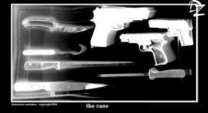 The Case by DandyZombie
