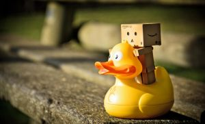 Danbo and..... a duck by 10thapril