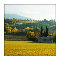 Autunno d'oro by LoRiBoX