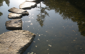 Stepping Stones by Glacdeas
