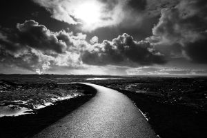The road less travelled by GretaTu