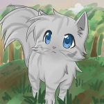 Dovewing by catcat49
