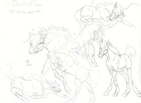 DF foal sheet by nypd