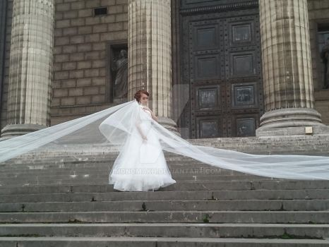 The bride is in white Paris by Monomakh