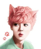 Pastel Kitty Luhan by IridescentJam