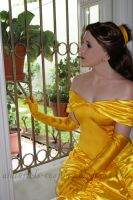 Belle by Nightmare-Lust