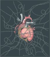 heart in web by Daver2002ua
