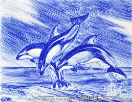 Leaping lags - Lagenorhynchus obliquidens by namu-the-orca