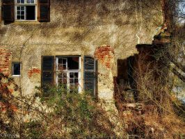 Decay IV by Weissglut