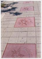 Canadian Walk of Fame by I-Am-Canadian-Eh