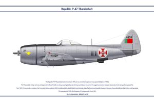 P-47 Portugal 1 by WS-Clave