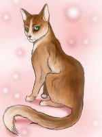 first cat drawing by Amanouzume