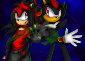 Gie and Shadow The Hedgehogs by Gie