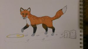Fox in the flour by jenniology