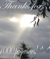 1000 Pageviews by LinksLove