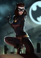 Vintage Catwoman by velsen