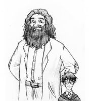 Hagrid and Harry by laerry