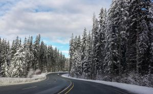 Road to Whistler by dashakern