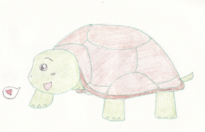 A Random Turtle by Luckybug76