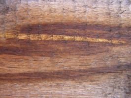 Wood texture 010 by AnnFrost-stock