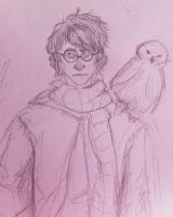 Harry Potter by GalaxyBones