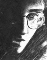 Harry Potter 6 by Pennamore