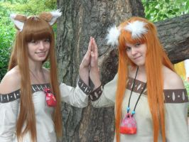 Connichi 2013 - Wolves stay together by Moeker