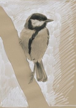 Coal tit : Grey and white markers by wimke
