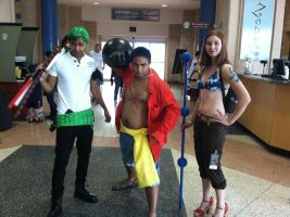 Metrocon 2012: Luffy, Zoro, and Nami by D-warrior35