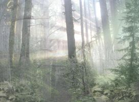 forest collage by deafield