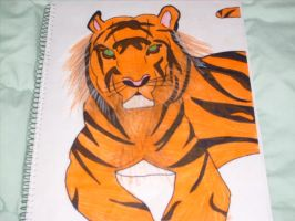 Tiger request for Hannahlee by GaarafanofLinkinPark