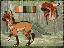adoptable - follow link- by Donnecha