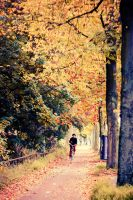 Painted boulevards by siddhartha19
