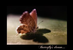 Butterfly's Dream by Nataly1st